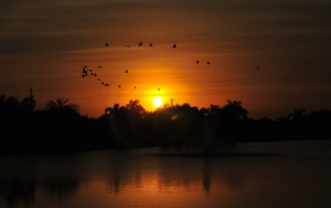 sunset31jan12